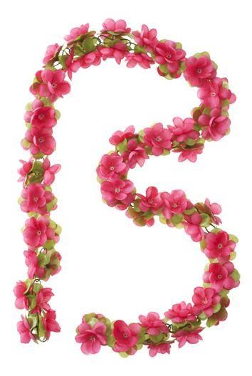 Bloemenslinger Basil Fuchsia 10cm